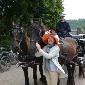 anita_horses